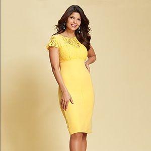 LACE SHEATH DRESS - EVA MENDES New York & Co